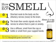 How to use Essential Oils to Smell