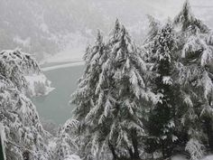 Ride through the snowy Alps on our Grand Trains of Europe tour or our Switzerland & Glacier Express tour.
