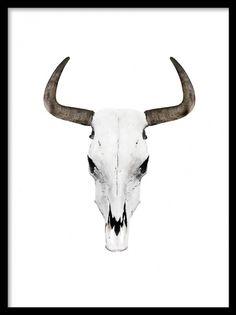 Print med buffelhorn. Trendig och moder poster med horn. Svartvita posters och prints. Affischer och planscher med buffelhorn.