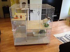 NIC bunny condo, 3x2x3, three levels on wheels