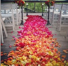 Roses down the isle