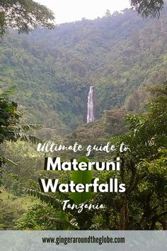 Materuni waterfall in Tanzania is one of the hidden gems that you can see here. You will get to visit beautiful waterfall where you can bathe in and locals are happy to show you their coffee plants  #Materuni #waterfalls #Tanzania #culturaltourism