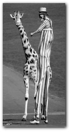me and my #giraffe on stilts