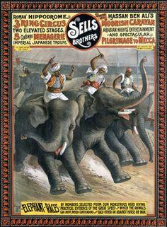 Sells Bros Elephant Circus Race Vintage Ad