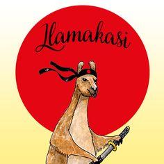 Pochette Surprise Llamakasi - 29,90€ Une box insolite spéciale lama, le cadeau parfait pour les amoureux des alpagas !