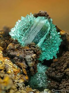 Pure adamite is colourless, but shows tints of green connected with copper substitutions