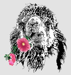 Camel and flower