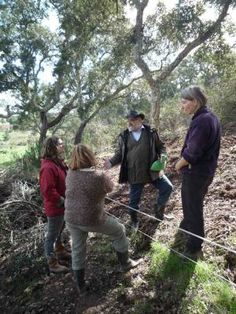 Working With Not Against Natural Forces - an original permaculture principle