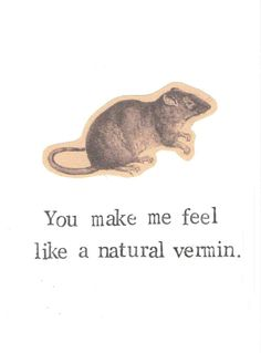 You Make Me Feel Like A Natural Vermin Rat Card | Funny Rodent Humor Nature Vintage Animal Pun Love Nerdy Weird Valentine Men For Him