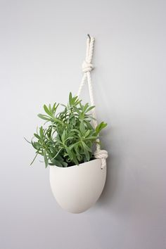 porcelain and cotton rope planter