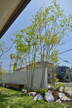 Landscape Walls, Landscape Design, Garden Design, Contemporary Garden, Contemporary Architecture, Pocket Garden, Garden Trees, Green Garden, Outdoor Plants