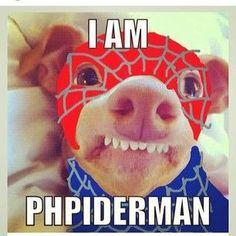 Phiderman!