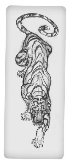 Tattoo Tiger Sketch with Splashes of Color. Placement: middle back, left sid. - Tattoo Tiger Sketch with Splashes of Color. Placement: middle back, left side of spine. Trendy Tattoos, Cool Tattoos, How To Draw Tattoos, Tatoos, Tiger Sketch, Tiger Drawing, Sketch Ink, Tribal Arm Tattoos, Tattoo Sketches