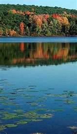 Big Cedar Lake is the biggest lake of 52 in Washington County. Big Cedar Lake offers miles of shoreline and over 900 acres of water activities for the outdoor enthusiast. The Places Youll Go, Places Ive Been, Cedar Lake, West Bend, Big Lake, Beautiful Park, Water Activities, Heaven On Earth, Day Trip