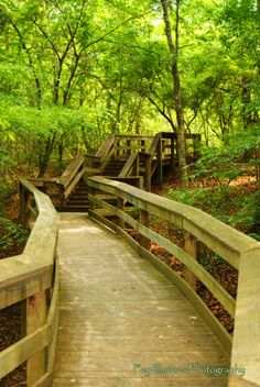 Travel | South Carolina | State Parks | Hiking | The Outdoors | Nature | Hikes