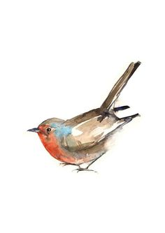 Robin Watercolor Painting Art Animal Aquarelle by FrancinaMaria