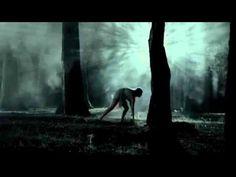 GANDHI BOSQUE - OGILVY MÉXICO.  Bronce en Film Lions.  Cannes Lions 2012.