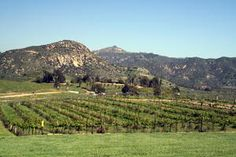 Visit Southern California wineries located in Temecula, Los Angeles, Ventura, and San Diego http://www.cheers2wine.com/southern-california-wineries.html #winery