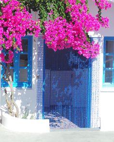 Good morning  #santorini #cyclades #greece #hellas #beauty #worldunion #wu_greece #igworldclub #ig_europe #ig_greece #simplicity #travelgram #travelphotography #bogainvillea#blue by marie_r_a