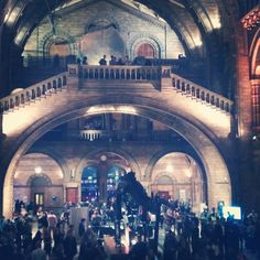 daniel_rea A night at the Muesum #nhm #scienceuncovered