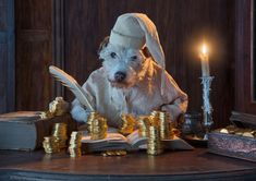 This Photographer Transforms His Dog Into Different Animals Every Holiday Season - 'Bah Humbug' 2012