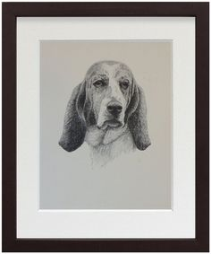 Basset Hound - Eminently patient, with one of the best noses in the dog business.  The perfect breed for the laconic owner who likes regular - albeit moderate - walks, and lots of sofa time.
