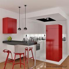 projekt otwartej kuchni  wariant kolorystyczny 2