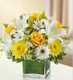 Healing Tears - Yellow and White