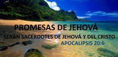 """Como Jesús prometió a los cristianos de Esmirna, estos vencedores que participan en """"la primera resurrección"""" no estarán en peligro de recibir daño de """"la muerte segunda"""", que significa aniquilación, destrucción sin esperanza de resucitar. (Revelación o Apocalípsis 2:11; 20:14.) La muerte segunda """"no tiene autoridad""""sobre estos vencedores, pues ellos se han vestido de incorrupción e inmortalidad. (1Corintios 15:53.)"""