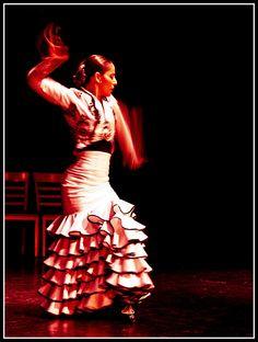 El flamenco del Sacromonte   Granada