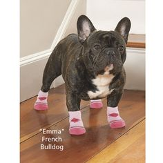 """$13 Traction Control Socks (Set of 4) - Easy to wear, nonslip socks help dogs with mobility issues get a firm foothold indoors while protecting hardwood floors. Also aids in wound protection. PROTECT FEET FROM LICKING / CHEWING DUE TO ALLERGIES?  Soft nylon/poly with gripper bottoms. Machine wash. Socks should fit snugly to provide the best traction. If unsure of size, choose the smaller. Sizes (Paw Width): XS (1 3/4""""), S (2""""), M (2 1/4""""), L (2 1/2""""), XL (3 1/2"""")."""