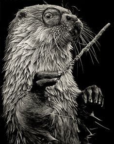 'Harry Otter' by Shauna Fannin............. A little for both of us!! LOL