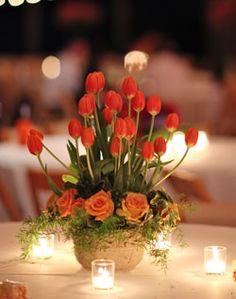 WeddingChannel Galleries: Red Tulip Centerpiece