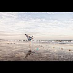 #BeachBallet #PamBellPhotography #Children #LifestylePhotographer #NikonProfessional