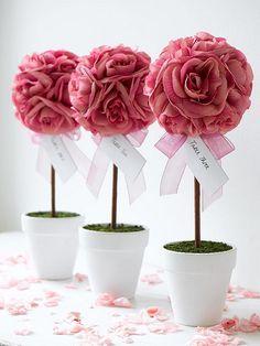 Rose Topiary Trees