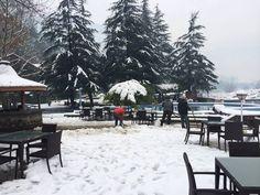 Snow Snow Snow#AppleValleyResortKullu