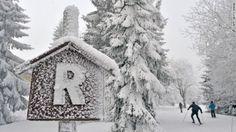 Skiers make their way through the snow near Oberhof, Germany, on Wednesday, January 25.