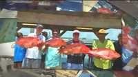 Orange Beach Fishing Charters - Funny Videos at Videobash