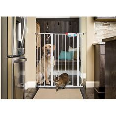 Carlson Pet Products Extra Tall Pet Gate