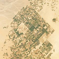 """A particularly stark example of the pixelated patterns produced by pivot irrigation, in northern Saudi Arabia"","