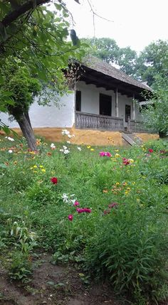 Romania Travel - Fun Things to Do in Romania - Bucket Lists Stuff To Do, Things To Do, Danube Delta, Visit Romania, Romania Travel, Rural House, Eastern Europe, Best Memories, Traditional House
