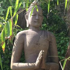 A budda statue is a sure way to get the Zen Garden style you are after.
