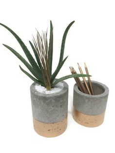 These Concrete Planters (set of 2) are designed for any type of plant. Deep planting cavity allows a wide range of choices. These can also be used as a catchall for office supplies (pens, pencils etc). Bathroom toothbrush holder or kitchen utensils. The tops are natural concrete gray which fades into Gold at the base. Ships within 1-2 biz days USPS. But I usually get them out within hours of purchase. Planters are made without drainage holes, but put Add Drainage in the notes to seller and I…