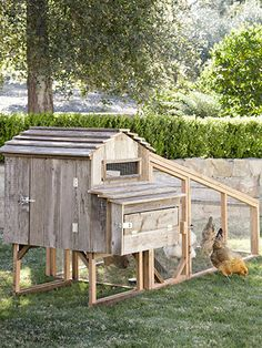 Crafted from fir and reclaimed redwood, Laughing Chickens' backyard coop attaches to a separate screened-in run.