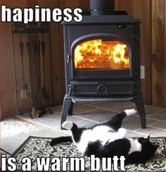 Happiness IS a warm butt... oh come on, we are the same. How about those seat warmers in your car? I know that they make ME happy. Simple pleasures in life