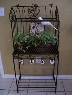 Cute freestanding large birdcage for RENT. Top removeable for superb staging access.