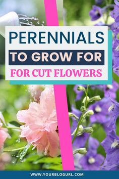 Bring the outdoors in with these Five Perennials To Grow In Your Cut Flower Garden. Grow your own cut flower garden. These gardening tips will help you grow a beautiful flower garden full of perennials you can cut for bouquets. These perennials for cutting garden are easy to grow and colorful. These are best perennials for cutting garden