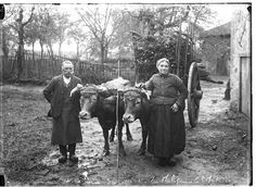 Biblim @Biblim  1Portrait de #paysans, ou la  corvée de bois # photo de  JB Boudeau, 1913 #limousin http://www.bn-limousin.fr/items/show/236#  Permalien de l'image intégrée