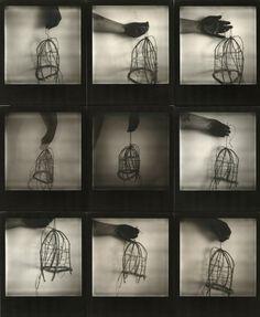black hand - cage © Birgit Zartl