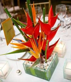 Like this- not overpowering.  Would like sea shells instead of rocks.  Heliconia and Bird of Paradise Centerpiece, also possibly add orchids.  (?!)